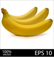 Three bananas in batch vector image
