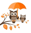 Two owls on the tree with umbrella vector image vector image