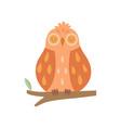 cute owl bird sleeping on branch vector image vector image