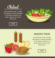 delicious salad healthy food vector image