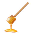 flowing honey stick sweetness healthy food 3d vector image
