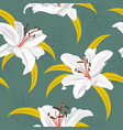 lily flower seamless pattern on green background vector image vector image