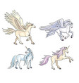 mythical horses vector image