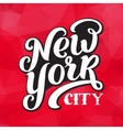 New York city typography brush pen design vector image