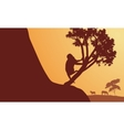 Silhouette of monkey and zebra in sunrise vector image vector image