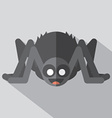 Flat Design Spider Icon vector image
