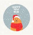 bear holidays vector image vector image