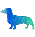 dachshund color book zen for adults vector image vector image