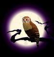 halloween owl moon vector image vector image