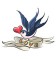 swallow with heart and ribbon tattoo vector image vector image