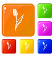 tulip icons set color vector image vector image