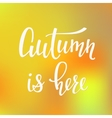 Autumn is here quotes typography vector image vector image