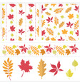 autumn set of seamless patterns border and leaves vector image