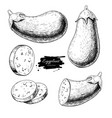 eggplant hand drawn set vector image vector image
