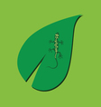lizard on the leaf color vector image