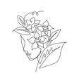 one continuous line drawing minimalist beauty vector image vector image