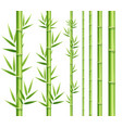 realistic 3d detailed bamboo japanese or chinese vector image vector image