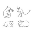 set 1 rodents in contours vector image vector image