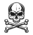 vintage skull and crossbones monochrome template vector image vector image