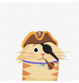 cat pirate wearing pirates hat and eye bandage vector image vector image