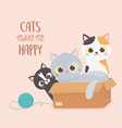 cats pet make me happy kitties with cardboard box vector image