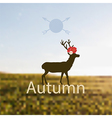 depicting Autumn vector image vector image