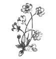 flowers hand-drawn vector image