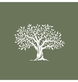 olive tree silhouette on grey background vector image vector image