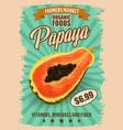 papaya or pawpaw tropical fruit exotic food vector image