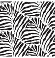 seamless pattern with febra skin endless vector image