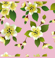 seamless spring background with white and p vector image vector image