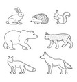 set forest animals in contours vector image