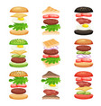 set of burgers and sandwiches with flying vector image