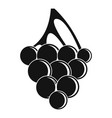 sultana grape icon simple style vector image
