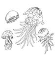 Hand drawn jelyfihs vector image