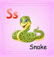 animals alphabet s is for snake vector image vector image