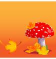 autumn amanita vector image vector image
