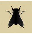 Black silhouette of a fly on yellow paper vector image