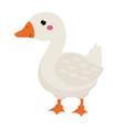cute goose cartoon farm bird isolated on white vector image
