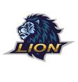 lion logo e sport mascot design vector image