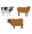 set of 3 animal cattle vector image