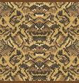 abstract python snake skin wallpaper vector image