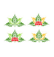collection mistletoe isolated on white vector image