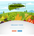 farm fresh vegetable banner with rural landscape vector image vector image