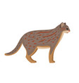 predator with spots rusty cat vector image vector image