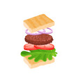 sandwich with flying ingredients bread slices vector image