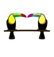 two toucans on white background vector image