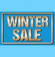 winter sale typography isolated on blue rubber vector image vector image