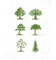 big collection of tree pine trees vector image