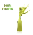 Fruits juices collection Kiwi vector image vector image
